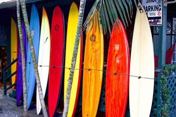 Vente planche de surf